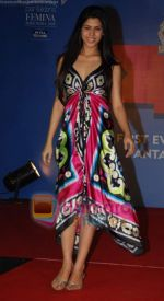 at Nivea Femina Miss India wild entry round in Inorbit Mall on 11th Jan 2009 (114).JPG