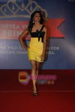 at Nivea Femina Miss India wild entry round in Inorbit Mall on 11th Jan 2009 (55).JPG