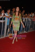 Aarti Chhabria at Nokia 15th Annual Star Screen Awards 2008 on 14th Jan 2009 (2)~0.JPG