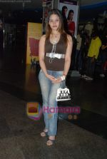 at 42 Kms film music launch in Fame on 15th Jan 2009 (14).JPG
