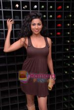Shefanjali at Kamia Malhotra_s Silver Spoon restaurant launch in Andheri on 18th Jan 2009 (5).JPG