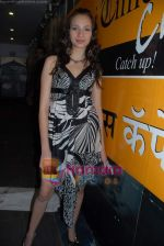 at Manish Chaturvedi_s bikini calendar launch for Toss Vodka Premix in Mumbai Times Cafe on 22nd Jan 2009 (89).JPG