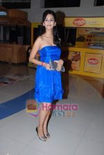 Chahat Khanna at The Film movie special screening in Fun Cinema on 4th Feb 2009 (3).JPG