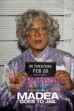 Movie Madea Goes to Jail Poster (2).jpg