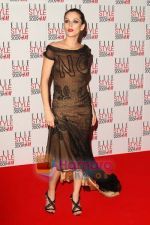 Anna Friel poses at the Elle Style Awards 2009 at Big Sky Studios on February 9, 2009 in London, England.jpg