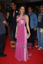 Aamna Shariff at the Premiere of Aloo Chaat in PVR, Juhu on 19th March 2009 (3).JPG