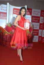 Asin Thottumkal at Fairever Fruit launch in Trident on 20th March 2009 (4).JPG