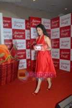 Asin Thottumkal at Fairever Fruit launch in Trident on 20th March 2009 (8).JPG