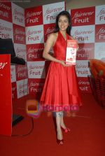 Asin Thottumkal at Fairever Fruit launch in Trident on 20th March 2009 (9).JPG
