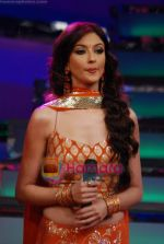 Saumya Tandon on the sets of Dance India Dance in Famous Studios on 23rd March 2009 (12).JPG