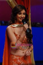 Saumya Tandon on the sets of Dance India Dance in Famous Studios on 23rd March 2009 (8).JPG