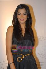 Mugdha Godse at DW TV press meet in Taj on 24th March 2009 (4).JPG