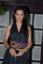 Mugdha Godse at DW TV press meet in Taj on 24th March 2009 (8).JPG