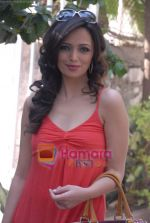 Roshni Chopra on the sets of Comedy Circus in Andheri on 25th March 2009 (10).JPG