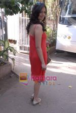 Roshni Chopra on the sets of Comedy Circus in Andheri on 25th March 2009 (98).JPG