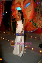 Mugdha Godse at the Grand finale of Gladrags Mega Model & Manhunt 09 in Mumbai on 28th March 2009 (2).JPG