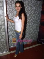 Shweta Gulati at the music launch of Detective Naani film in Cinemax on 12th May 2009 (13).JPG