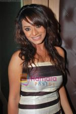Soni Singh at Betiyaan and Maayka success bash in BJN on 29th May 2009 (4).JPG