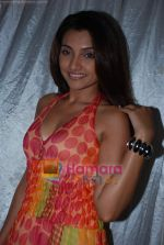at Love Tax film Mahurat in Adarsh Nagar on 6th June 2009 (34).JPG