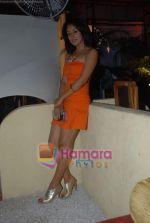 Sexy Girls album launch by Sikandar Mirza in Sheesha Lounge on 20th June 2009 (36).JPG