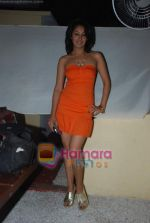 Sexy Girls album launch by Sikandar Mirza in Sheesha Lounge on 20th June 2009 (35).JPG