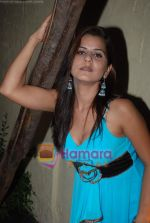 Sexy Girls album launch by Sikandar Mirza in Sheesha Lounge on 20th June 2009 (40).JPG