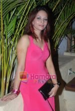 Sexy Girls album launch by Sikandar Mirza in Sheesha Lounge on 20th June 2009 (73).JPG