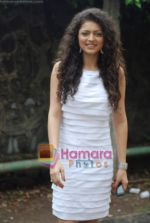 Drushti at Cinevistaas Dill Mill Gaye celebrates 400 episodes in Kanjumarg on 5th Aug 2009 (10).JPG