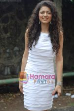 Drushti at Cinevistaas Dill Mill Gaye celebrates 400 episodes in Kanjumarg on 5th Aug 2009 (2).JPG