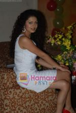 Drushti at Cinevistaas Dill Mill Gaye celebrates 400 episodes in Kanjumarg on 5th Aug 2009 (4).JPG