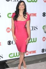 Navi Rawat at the CBS CW & Showtime TCA Party on 3rd August 2009 in Pasedina (2).jpg