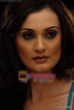 Vaishali Desai Photo Shoot (121).JPG