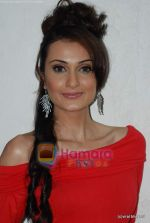 Vaishali Desai Photo Shoot (142).JPG