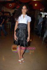 Ayesha Kapur at Sikandar promotional event in PVR on 17th Aug 2009 (21).JPG