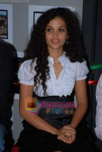 Ayesha Kapur at Sikandar promotional event in PVR on 17th Aug 2009 (22).JPG