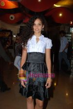 Ayesha Kapur at Sikandar promotional event in PVR on 17th Aug 2009 (23).JPG