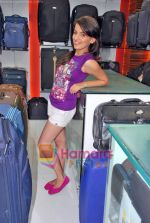 Natasha Bhardwaj promote American Tourister in Khar on 8th Sep 2009 (24).JPG