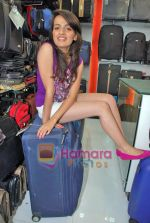 Natasha Bhardwaj promote American Tourister in Khar on 8th Sep 2009 (26).JPG
