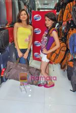 Pooja Kanwal, Natasha Bhardwaj promote American Tourister in Khar on 8th Sep 2009 (6).JPG