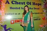 Sarika Desai at the inauguration of Gitanjali lifestyle A Chest of Hope exhibition in Taj Presidnt on 3rd Oct 2009 (6).JPG