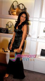 Bipasha Basu at the re- opening of the Jimmy Choo store at Galleria, Trident, Nariman Point, Mumbai on 5th Oct 2009 (2).jpg