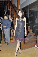 Sushma Reddy at Estetica magazine launch in Zenzi on 10th Oct 2009 (3).JPG