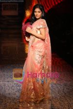 Amrita Rao  at the Fiama Di Wills show at WIFW on 27th Oct 2009.JPG
