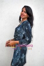 Sameera Reddy at De Dhana Dan Media meet in Juhu, Mumbai on 30th Oct 2009 (7).JPG