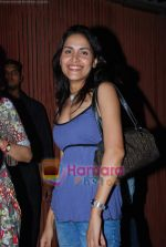 Tapur Chatterjee at Dabang pre film bash in Aurus on 13th  Nov 2009 (2).JPG