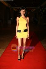 Sherlyn Chopra at Viren Shah_s Apex Awards in Grand Hyatt on 21st Dec 2009 (3).JPG