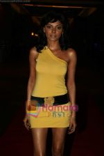 Sherlyn Chopra at Viren Shah_s Apex Awards in Grand Hyatt on 21st Dec 2009 (6).JPG
