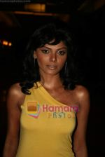 Sherlyn Chopra at Viren Shah_s Apex Awards in Grand Hyatt on 21st Dec 2009 (7).JPG