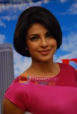 Priyanka Chopra at Pyaar Impossible photo shoot in Yash Raj on 25th Dec 2009 (16).JPG
