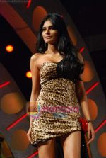 Sherlyn Chopra at Big Boss Grand Finale in Lonavala on 26th Dec 2009 (106).JPG